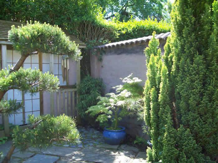 Backyard Transformation | Coutyard Garden Design